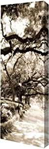 "PrintArt GW-POD-11-PSHSF-823-7x20""Savannah in Sepia II"" 由 Alan Hausenflock 画廊包边艺术微喷油画艺术印刷品,17.78 cm x 50.8 cm"