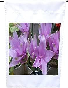 Rikki Knight 华丽的玉米花在银斗中的花朵在弗洛里斯特房子或花园旗帜 30.48 x 45.72 cm 旗帜尺寸 27.94 x 27.94 cm 图案