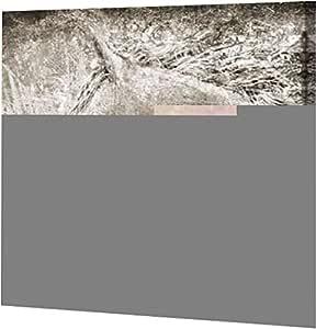 "PrintArt GW-POD-57-EY26962-40x40""Majestic Horse""由 Eric Yang Gallery 装裱艺术微喷油画艺术印刷品 36"" x 36"" GW-POD-57-EY26962-36x36"