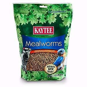Kaytee Mealworms 17.6 Ounce 100505655
