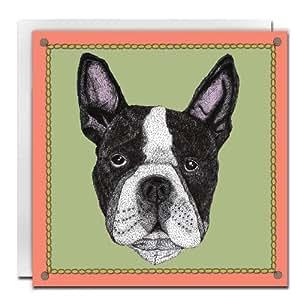 Lisa Bliss Boston Terrier 单张卡片,绿色