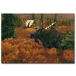 WGI Gallery WA-DAM-2416 Denali 秋驼鹿墙壁艺术