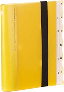 Lihit Lab 约 & 分类文件夹12隔层 A5 S型 黄色