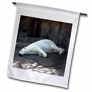 BEVERLY TURNER Bear 摄影–睡 polar Bear–旗帜 12 x 18 inch Garden Flag
