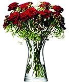 LSA 国际花卉混合花瓣花瓶,高 29.21 厘米,透明