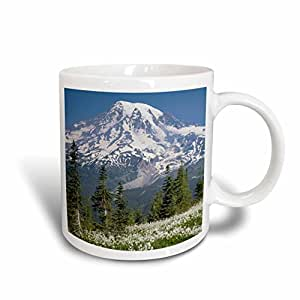 danita delimont–山地–华盛顿,雷尼尔山国家公园。–马克杯 白色 11 oz