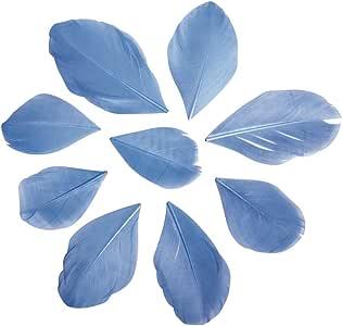 Rayher 85463356 弹簧,5 – 5 厘米,SB-Btl 36 件,浅蓝色