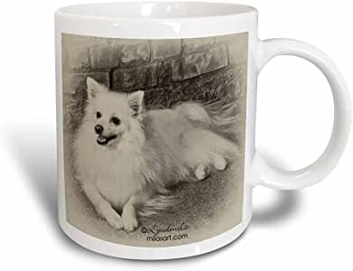 mug_4631_3 Milas Art Dogs - American Eskimo Dog - Mugs - 11oz Magic Transforming Mug