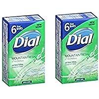 2 X 6 包 DIAL MOUNTAIN FRESH * SOAP 12 块 BARS 总计 MOUNTAIN FRESH 6