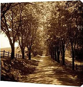 """PrintArt GW-POD-11-HSF-029-24x24""""Ash Lawn I"""" 由 Alan Hausenflock 画廊装裱艺术微喷油画艺术印刷品 24"""" x 24"""" GW-POD-11-HSF-029-24x24"""