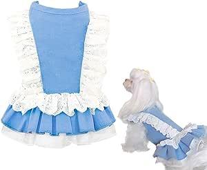 Pet Favorite Cat Apparel 牛仔小狗服装狗狗连衣裙胸背带蕾丝适合小型犬蓝色 蓝色 X-S