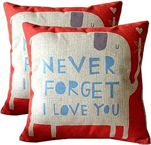 抱枕枕套装饰方形棉麻枕套,2 件套柔软抱枕套,适用于沙发卧室汽车 45.72 x 45.72 cm Nerver Forget I Lover You,2pcs