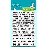 """草坪 Fawn Offset 字样:Birthday Clear Stamps,4""""x6"""" (LF2235)"""