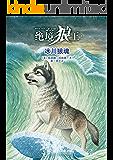 绝境狼王系列5:冰川狼魂(欧美动物文学畅销书排行榜第一名,动物奇幻小说女王凯瑟琳·拉丝基最新力作