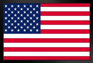 ProFrames 创作的美国国旗 裱框海报 14x20 inches 292510
