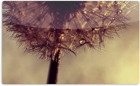 "KESS InHouse Ingrid Bedow""Droplets of Gold""艺术铝制磁铁,5.08 厘米 x 7.62 厘米,多色"