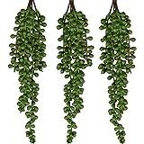 Seeko 人造多肉 - 3 件装 - 珍珠挂绳植物