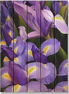 Gizaun Art French Iris 28-Inch by 36-Inch Inside/Outside Wall Art, Full Color on Cedar