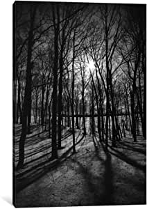 iCanvasART 11073-1PC6-18x12 Forest on The Oak Ridges Moraine Canvas Print by Unknown Artist, 1.5 x 12 x 18-Inch