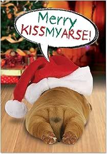 B1908 Box Set of 12 Kissmyarse Humorous Christmas Paper Cards with Envelopes