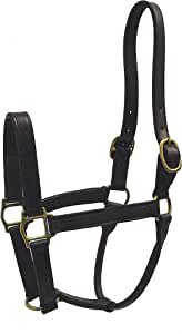 Hamilton 1-Inch Leather Deluxe Halter, Average Size, Fits 800 to 1100-Pound, Havana Brown