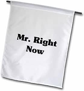 MARK Andrews zegear 酷炫–MR right NOW–旗帜 12 x 18 inch Garden Flag