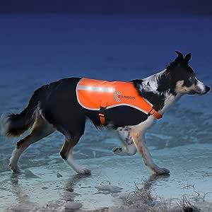 Illumiseen LED 狗狗背心 | 橙色*夹克带反光条和 USB 可充电 LED 灯 | 提高狗狗在散步、跑步、户外训练时能见度 | 带扣 橙色 小号