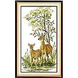 *刺绣入门套件十字绣套件初学者适用于 DIY 刺绣,40 种图案设计 鹿家族 Maydear-SCS-6942