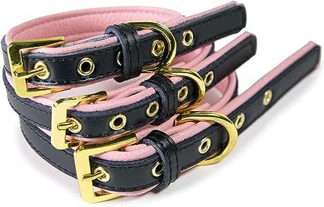 "CoreLife 狗狗项圈/猫项圈 - 填充人造皮革宠物项圈,适合猫咪、中小型犬 Black on Pink S (Neck Size 10.5"" - 13"")"