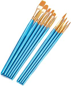 ECONIE 油漆刷尼龙毛刷套装,尖圆艺术画笔带油漆托盘塑料调色板适用于各种用途油画艺术家专业套装 天蓝色