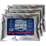 Cooler 抗震3X LG zero ° F Cooler FREEZE packs 25.4x 35.6cm–NO more 冰数 ICE and IS 可重复使用–EASY FILL–YOU ADD 水和保存 .–5.4kilogram TOTAL