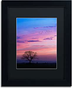 Trademark Fine Art A Kind of Dream by Philippe Sainte-Laudy Black Matte and Black Frame, 11 by 14-Inch