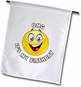 "3dRose Carsten Reisinger - 插图 - OMG It Is My Birthday Supper Happy Emoji 微笑 - 旗帜 12"" x 18"" fl_268563_1"