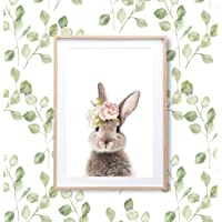 DROB 收藏版兔子印花动物墙艺术幼儿儿童海报婴儿壁画 - 摄影艺术 43.18 厘米 x 58.42 厘米。 高级艺术…