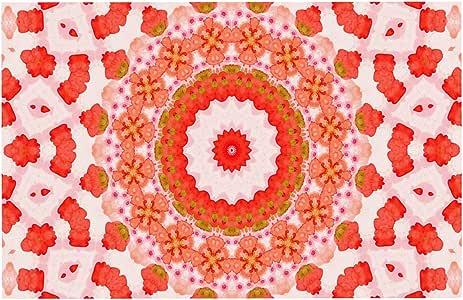 Kess InHouse IL2095ADM02 Iris Lehnhardt 曼陀罗 I 红色橙色狗狗垫子,60.96 厘米 x 38.10 厘米