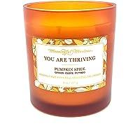 南瓜香料秋季 8 盎司(约 226.8 克)蜡烛 - 南瓜蜡烛 You are Thriving 姜丁香肉豆蔻假日蜡烛…
