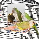 Colorday 7 英寸不锈钢鸟镜带绳栖息地,鸟类玩具秋千,舒适栖息地,适用于灰色、亚马逊鹦鹉、鸡尾鹦鹉、鸡尾鹦鹉、爱鸟、雀鸟、雀鱼 中
