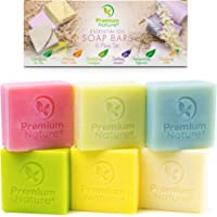 Bar Soap Body Bath * - 6 件天然手部皂乳木果油,香皂多样礼盒套装素食沐浴皂,含精油敏感肌肤保湿霜,男女皆宜,含剑麻省