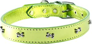 """OmniPet Signature Leather Dog Collar with Bone Ornaments, Metallic Lime Green, 22"""""""