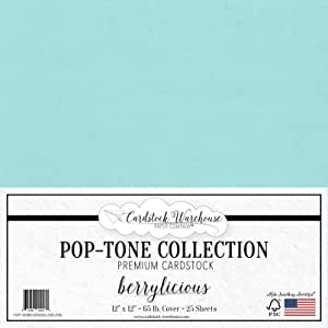 POP-Tone 卡片纸 - 30.48 x 30.48 厘米 65 磅优质封面 - 25 张 Cardstock Warehouse Berrylicious CWPT-BERRYLICIOUS65-1212-25PK