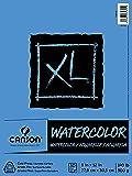 Canson 水彩纸垫,30 张,9 英寸 x 12 英寸,加大号 多种颜色 9 by 12-Inch MOR70224…