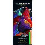 Prismacolor 27049 Premier NuPastel Firm彩色棒,24支