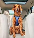 Solvit Deluxe Car Safety Harness 蓝色 大