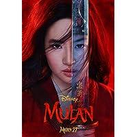 newhorizon Mulan 电影海报 43.18cm x 63.5cm 不是DVD