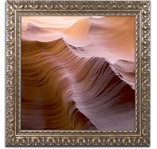 """Trademark Fine Art Smooth I by Moises Levy in Gold Ornate Framed Artwork, 11 by 11"""""""