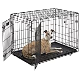 MidWest iCrate Double-Door Folding Metal Dog Crate, 36 Inche…