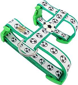 Queenly 狗狗挽具足球,绿色-白色 grün-weiß M